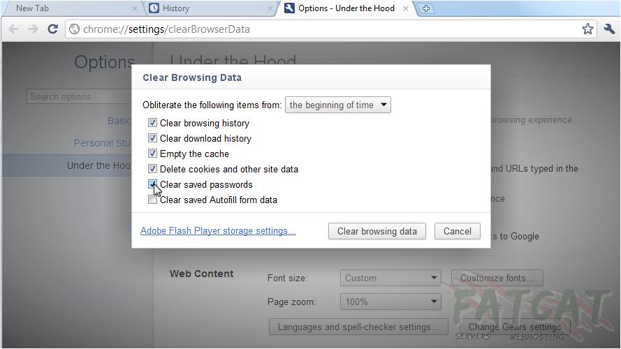Google Chrome - FatCat Servers Web Hosting